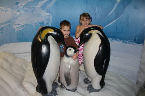 Hugging the Penguins