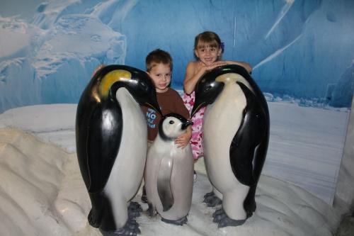Hugging the Penguins