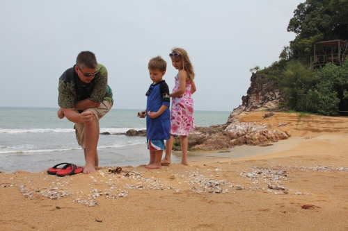 Kids collecting shells with Daddy