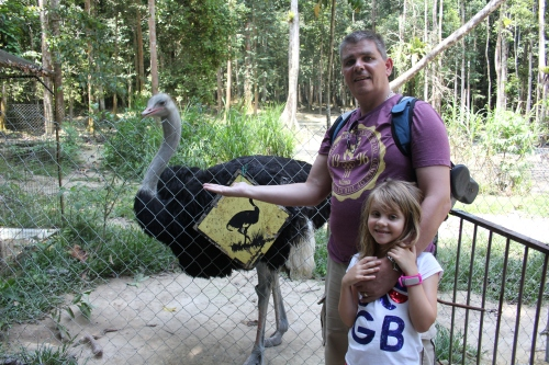 Isabelle did not want to get her hand pecked by the Ostrich!