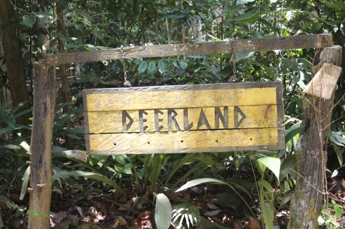 "First stop on our ""Safari"" was at Deerland"