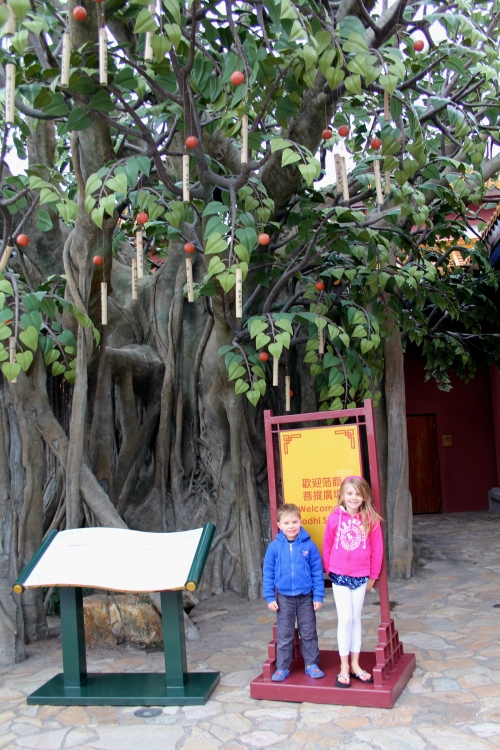 Posing by the wishing tree.