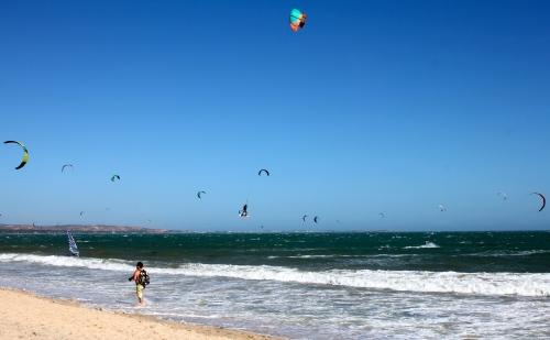 Kite surfers galore