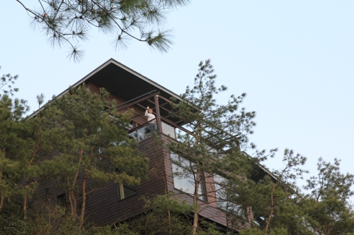 Our Tree Top Villa - Owl 4