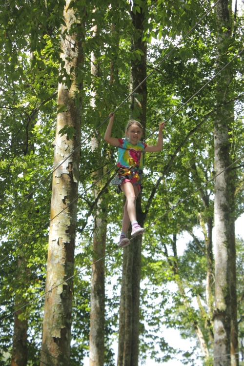 Isabelle high in the trees!
