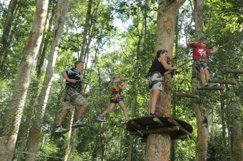 The 4 of us having fun on the wires in the treetops!